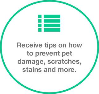 tips image.jpg